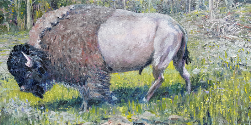 Yellowstone Bison oil painting by April Lombardi